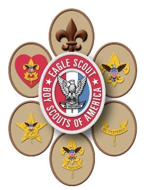 Troop 263 Rank logo